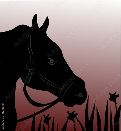 Illustration of silhouette of a horse