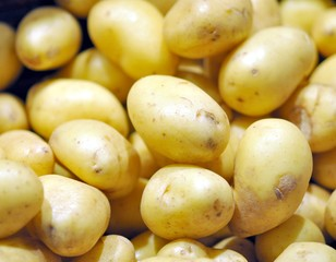Wochenmarkt, Kartoffeln