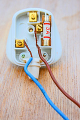 Electric plug with loose wires