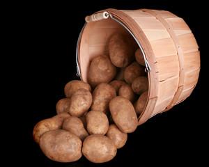 Bushel of potatoes isolated on a black background