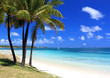 paradise beach in tropical island - 19456538