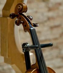 Dettaglio di un violino