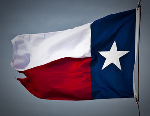 New Texas Flag