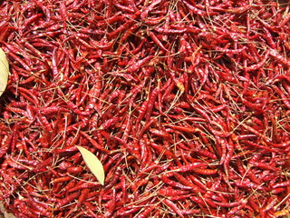 Dried red chili peppers, Thailand.