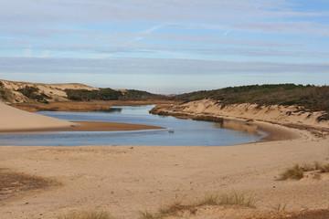 Landes Moliets réserve naturelle courant d'Huchet