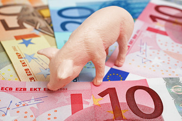 Savings Pig with Money - Sparschwein mit Geld