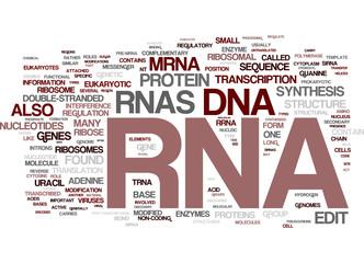 RNA word tag