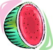 Illustration of fresh fruit of water  melon