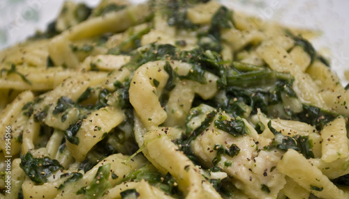 Chicken Alfredo Pasta with Spinach 2
