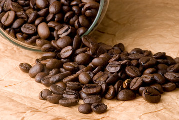 Coffee beans on cargo paper