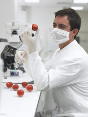 Scientist holding syringe and tomato