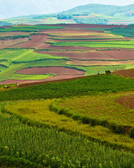 colorful scenery of hongtudi (2)