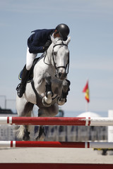 Horse and rider clearing an obstacle at a show jumping event