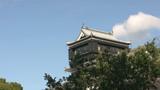 Turret of the Japanese Castle Kumamoto poster