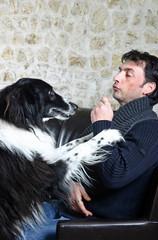 chien demandant avec insistance une friandise à son maître