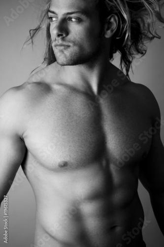 sexy torso