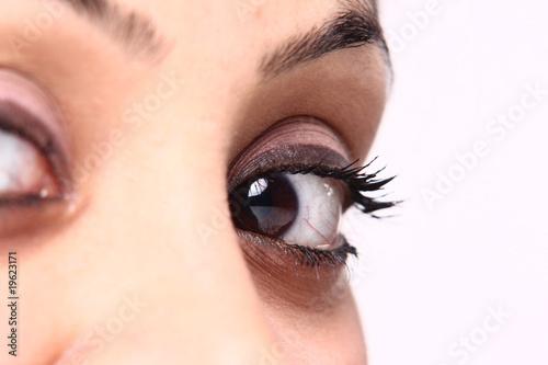 beautiful brown eye