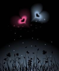 Night farden