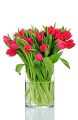red tulips in the vase isolated on white background