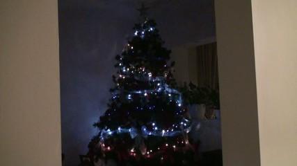 Christmas Tree - Night