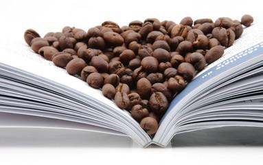 Coffee seeds on book