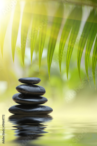 In de dag Bamboo Grean bamboo leaves over zen stones pyramid over water