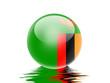 bandeira da Zambia