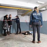 Murder Scene discovery poster