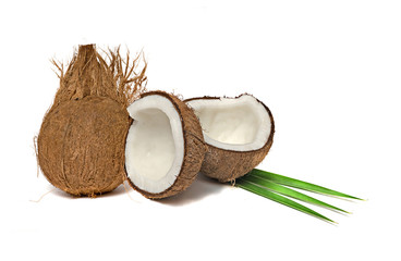 Coconut and its sections  isolated on white background