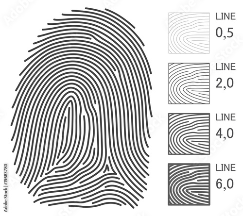 Fingerprint Vector Lines / Variable thickness of line