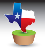texas state icon on green patch poster