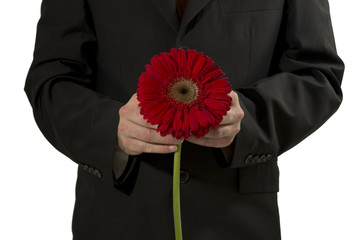 man in siut with a gerbera