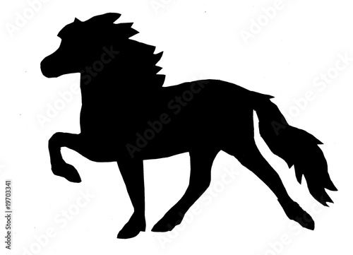 black horse with white star