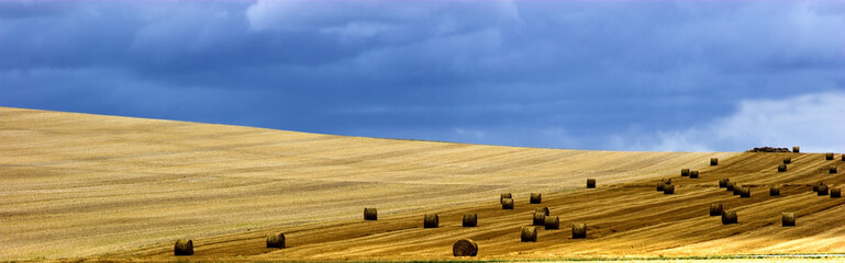 french landscape rural with cutted grain field and bales