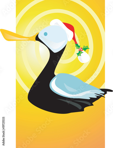 A black duck as Santa