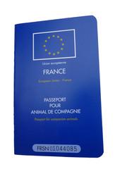 passeport de TITI