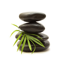 Black stones and green  leaf