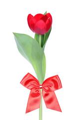 red flower gift