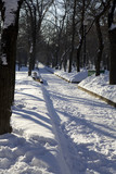 Two benches covered with snow. Tverskoy boulevard. Moscow. poster
