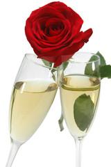 Copas de champagne y rosa roja