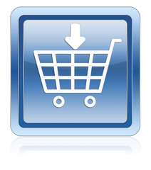 ecommerce insert product icon