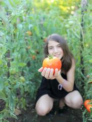 Une tomate du jardin ?