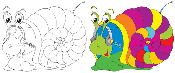 Snail (black-and-white and color illustrations)