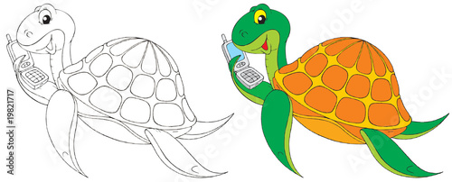 Turtle (black-and-white and color illustrations)