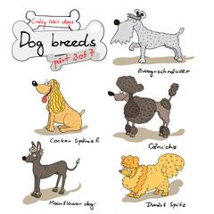 dog breeds 3