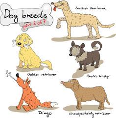 dog breeds 2