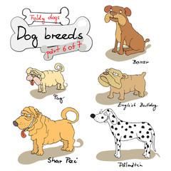 dog breeds 6