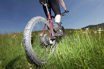 Uphill im hohen Gras