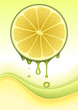 Orange Lemon Concept. VECTOR IMAGE