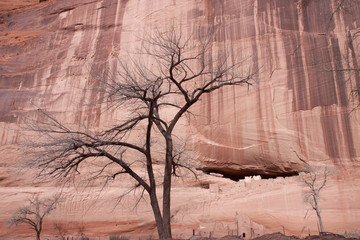 Magical historical canyon in Navajo land
